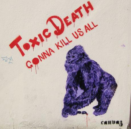 Gorilla By Canvaz