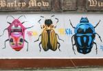 fink-graffiti Culture Night - Pest House